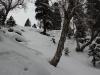 Kashmir_Gulmarg_Ski_111