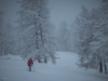 Mid_Winter_Powder_Verbier-2