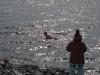 Antarctica_Peninsula_20.jpg
