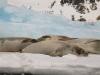 Antarctica_Peninsula_24.jpg