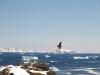 Antarctica_Ski_Touring09.jpg