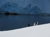 Antarctica_Ski_Touring21.jpg