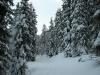 Ski_Tour_Bruson_Orsieres-1.jpg