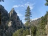Restonica Valley