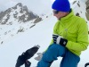 Alpine Chough
