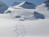 Greenland_Heliskiing_2015-11