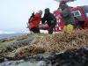 Greenland_Heliskiing__200916.jpg