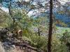 Meiringen rock climbing garden