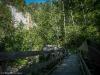 forest paths near Meiringen