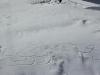 Kashmir_Gulmarg_Ski_105