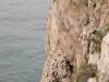 Rock_Climbing_Finale-57