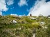 Summer_Haute_Route_Glacier_Trek-36